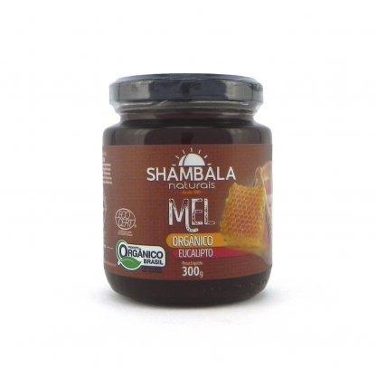 Mel eucalipto organico 300g shambala